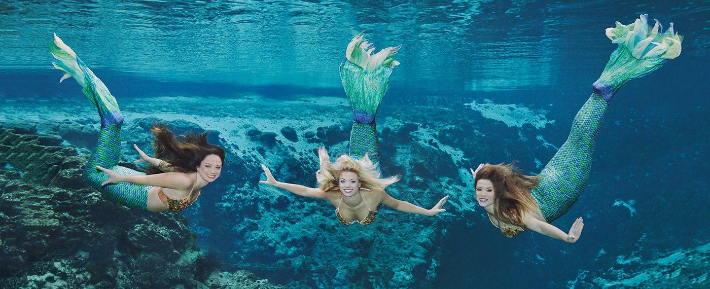 mermaid shows weeki wachee springs state park