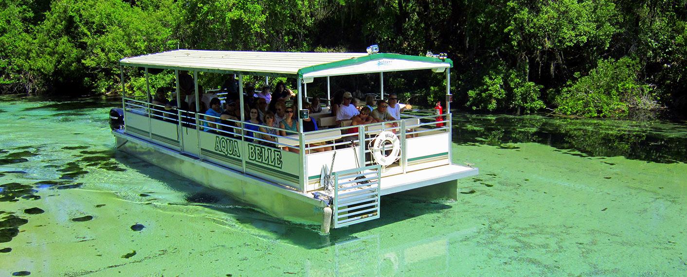 weeki wachee boat tour