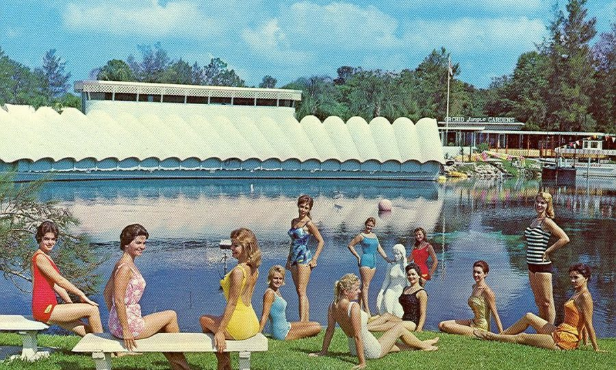 people enjoying historic weeki wachee park