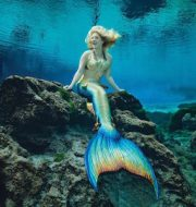 meet the mermaids