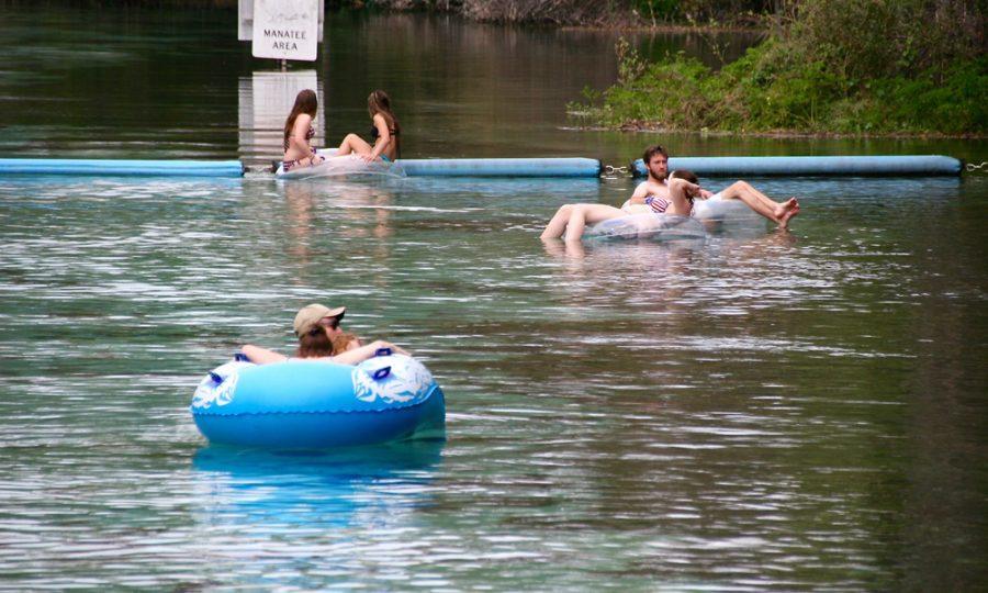 Buccaneer bay weeki wachee springs state park - River park swimming pool schedule ...
